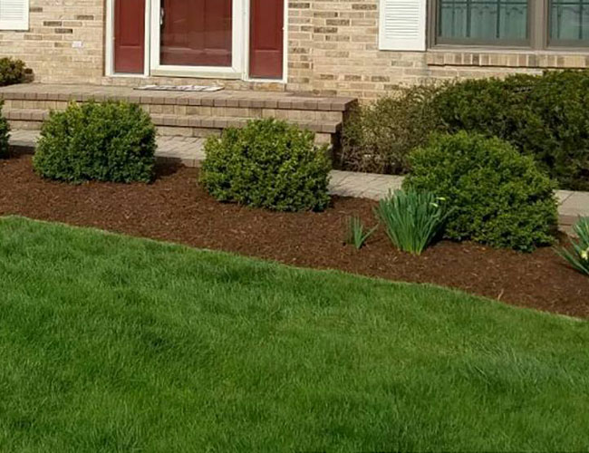 T&C Landscaping Services
